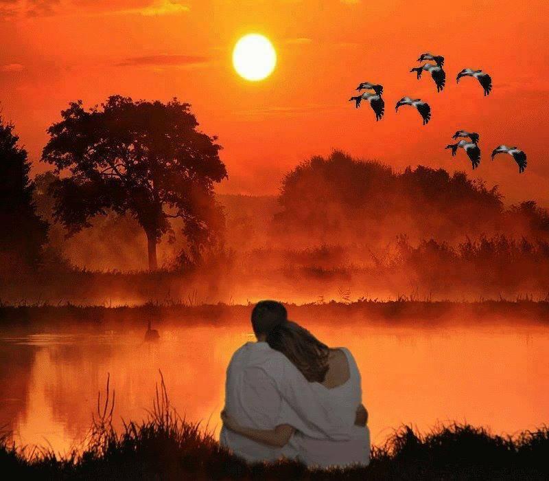 Андрей Шпехт - Наша любовь. Музыкальная открытка