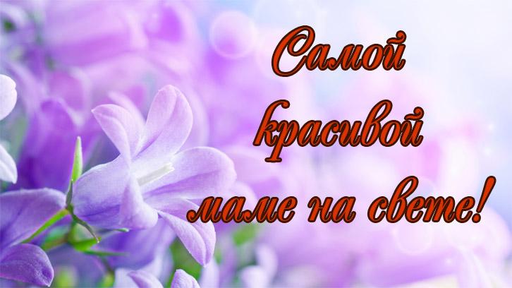 Азамат Цавкилов - Мама