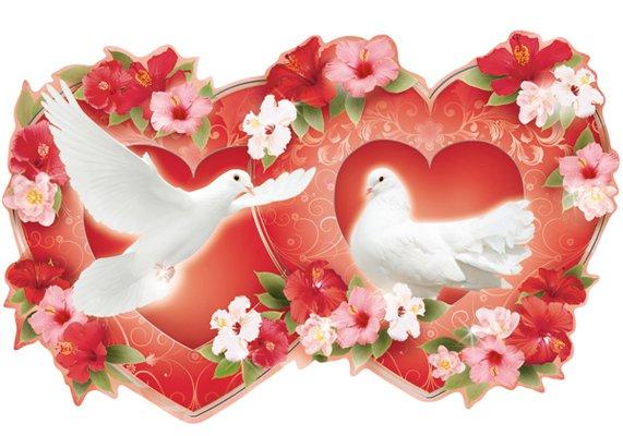 Картинки сердце голуби